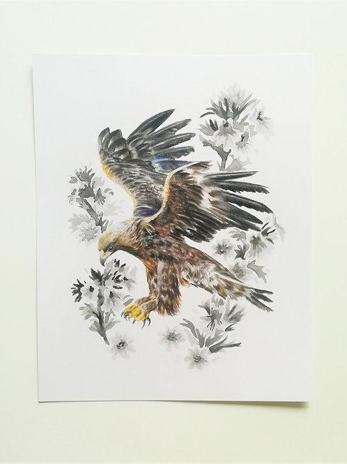 "Golden Eagle 8x10"" artwork print"