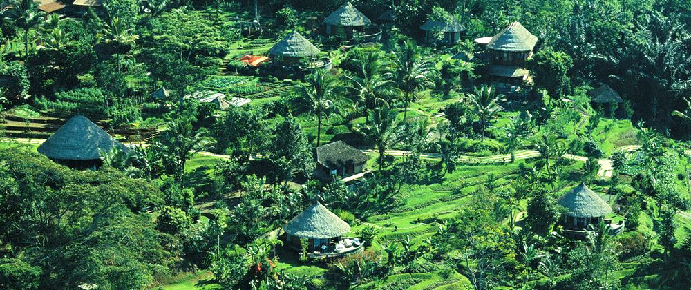 Nature reserve in Bali