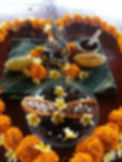 Cacao alter 2014.jpg