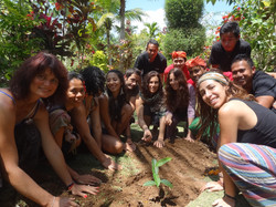Charity in Bali - tree planting