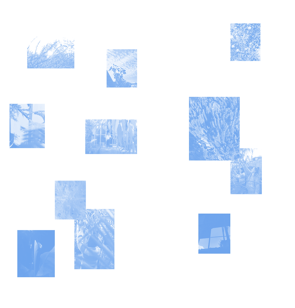 SHOP-BG-BLUE.png