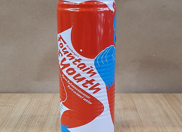 Fountain Of Youth Coconut Water - 520ml