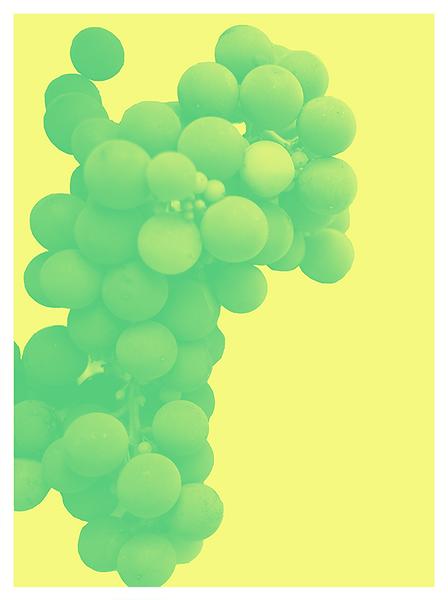 greengrape-whiteborder.png