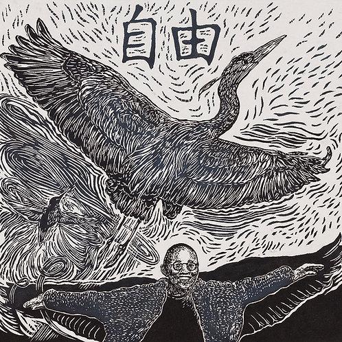 Flying to Freedom 6/10EV