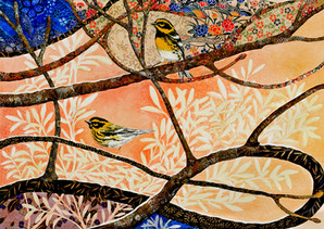 Infinitree- Townsend's Warblers