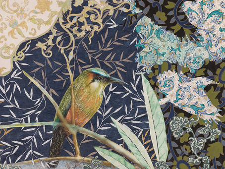 La Selva: Turquoise-Browed Motmot