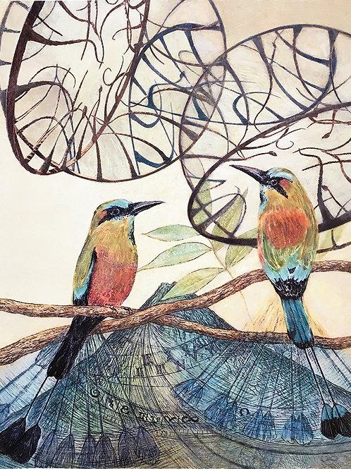 Clock Birds II - Turquoise-Browed Motmots