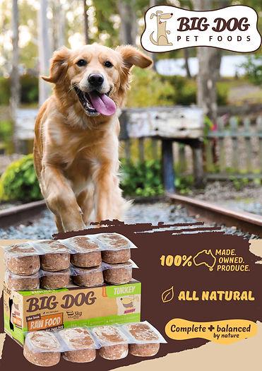 Big Bog Poster.jpg