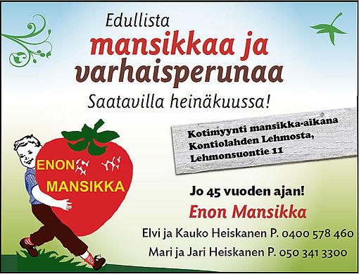 Enon_Mansikka_45_v_Lehmonsuontie.jpg
