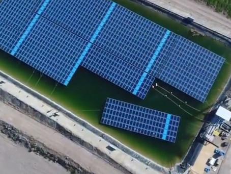 Plantas FV flotantes - Agricultura bajo la energía del sol