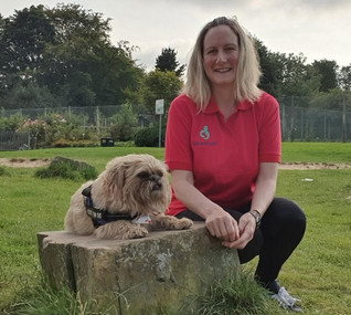 Dog Lover Introduces Life-Saving Canine First Aid Courses in Merseyside