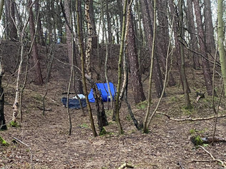 Rubbish dumped as campers set up camp in Pinewoods