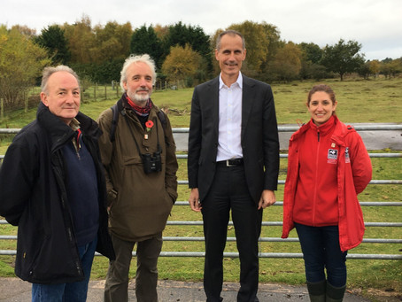 MP backs red squirrel conservation work in Formby