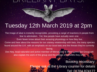 Formby Library's next monthly talk is about 'Brilliant Bats'