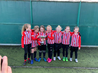 Formby Junior Sports Club - Franks report