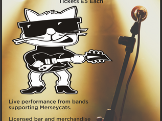 An evening with Rock 'n Roll band Merseycats at Formby Pool