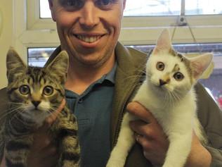 Happy Ending for Abandoned Kittens