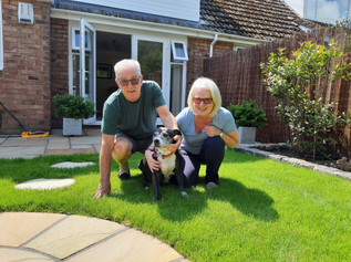 Millie goes home thanks to Freshfields Animal Rescue and your help