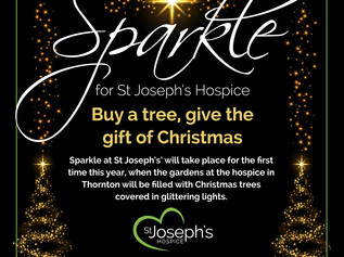 Help the hospice sparkle this Christmas