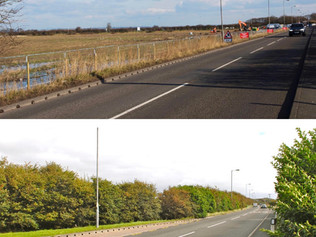 A petition has now been set up to see that developers who criminally damaged  hedgerow are fined