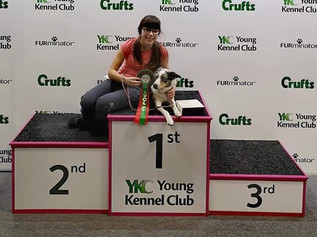Formby High School pupil and her Border Collie win 1st place at Crufts