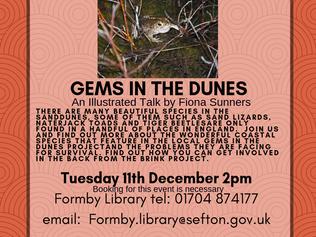 December talk at Formby library