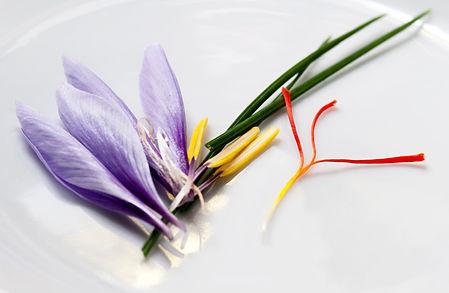 Saffron Flower Parts.jpg
