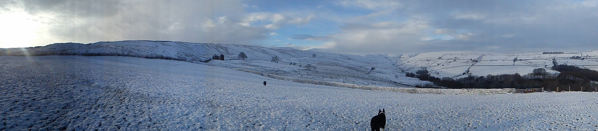 Pure white days on Holcombe SSSI