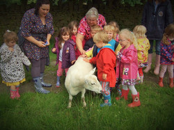 children stroke sheep