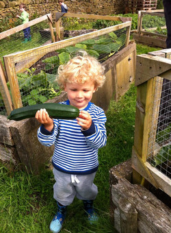 Growing at Cronkshaw Fold Farm