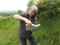 mammal trapping and recording