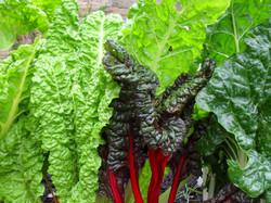 Fresh vegtables for sale Helmshore