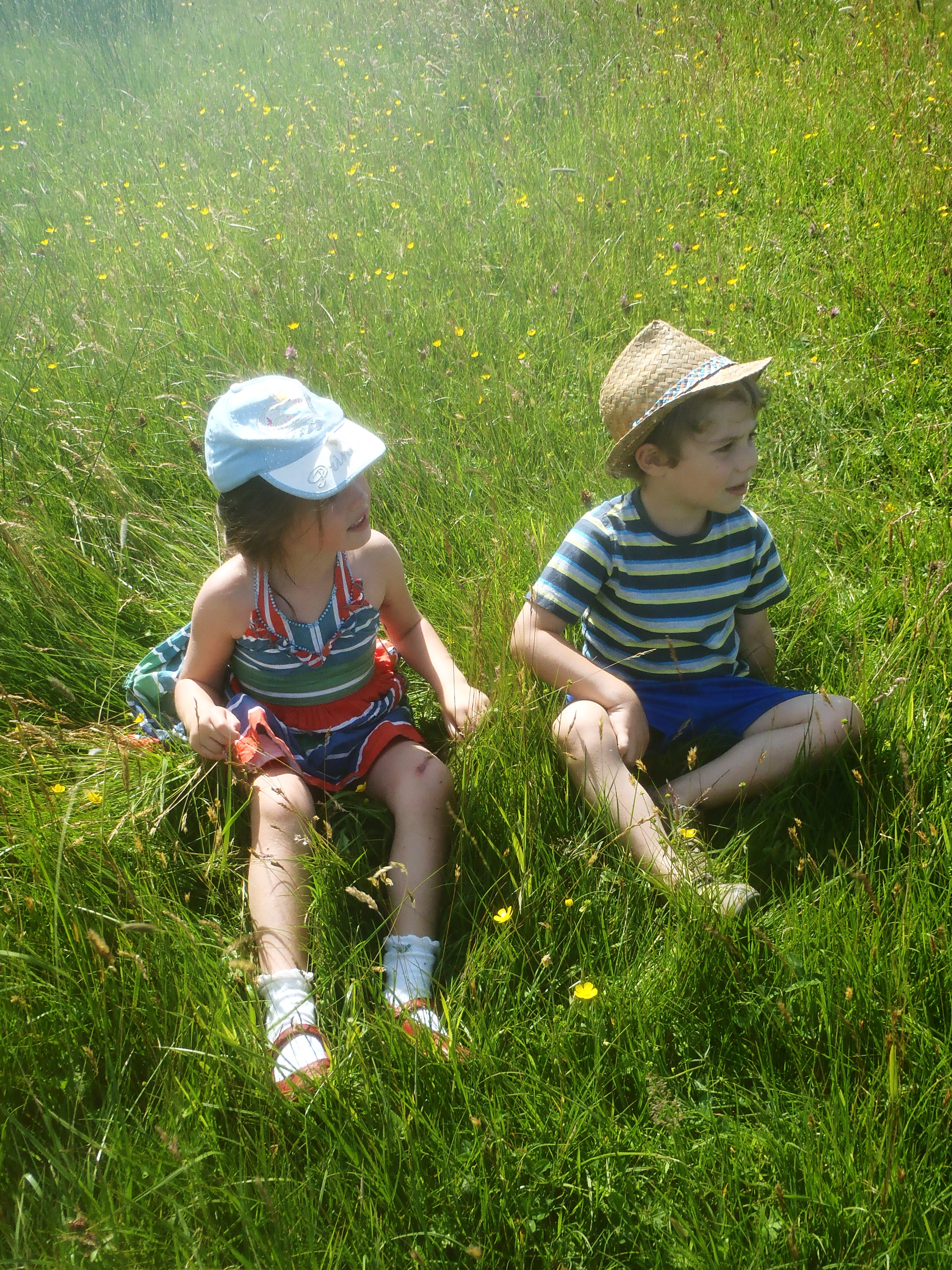 children in the meadow grass