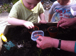 Seed planting at Cronkshaw fold Farm