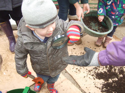 Studying the soil