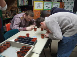 learn what grows in which soil type