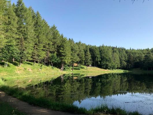 lago-della-ninfa-estate-web.jpg