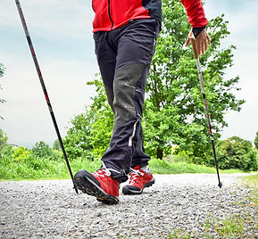 Nordic_Walking_0_web.jpg