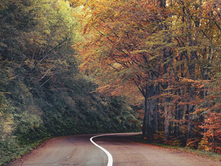 Il foliage ai piedi del Monte Cimone