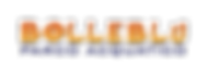 logo-bolleblu-01.png