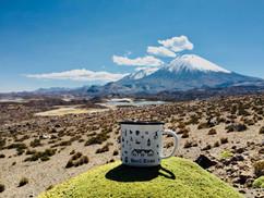 Vulcano Parinacota | Ande