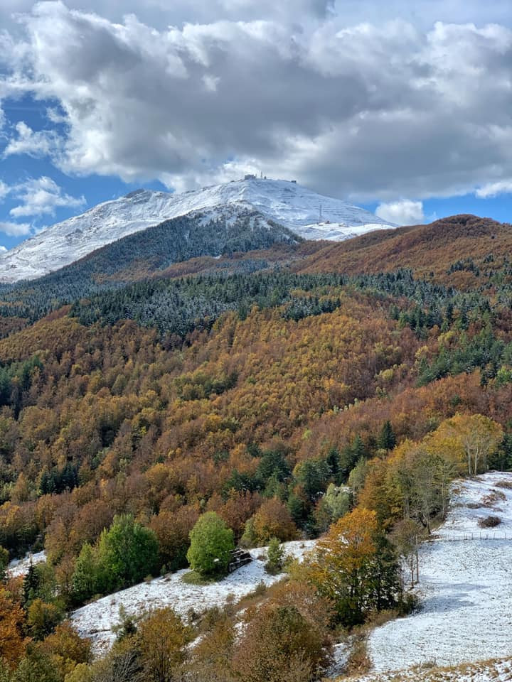 Monte cimone, Sestola, foliage, Appennino