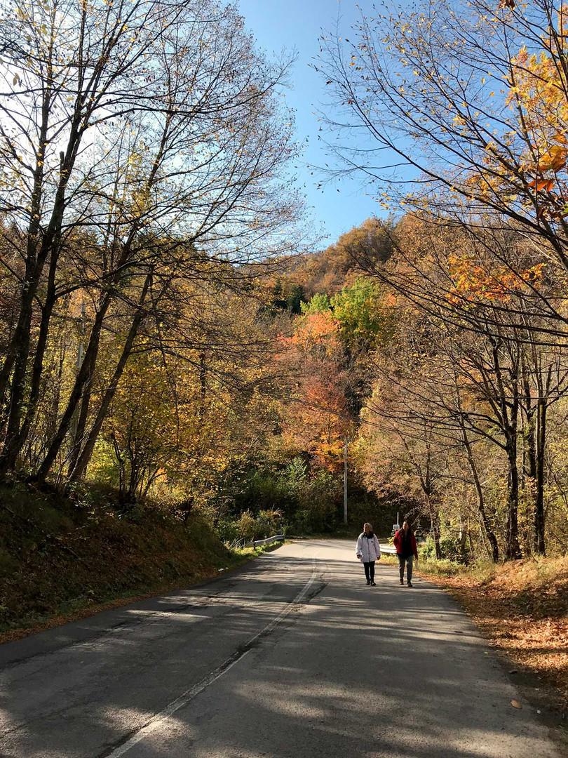 Sentiero 4 verso Sestola.jpg
