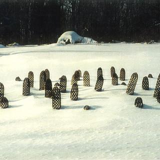 August Grove In Deep Snow