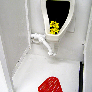 Urinal with Flowers