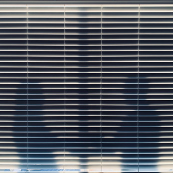 Dancing in the Shadows // Karlee Bridegan — Photography