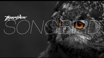 Lions'den - Songbird has been released