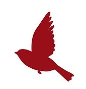Red Bird Art.png