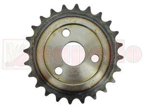 Pignon CAPELLO M1-30244