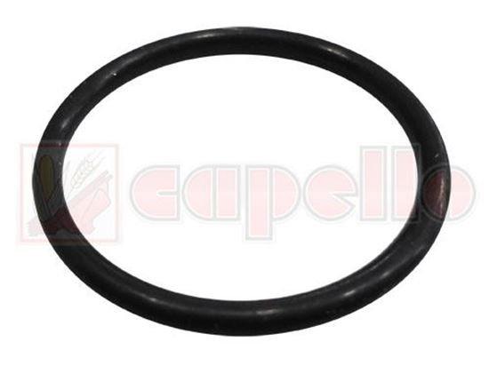 O-Ring CAPELLO PMF-000166